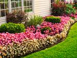 Рабатка: цветочный венок для Вашего участка