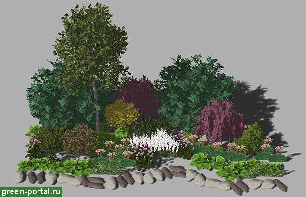 Группа растений в июле