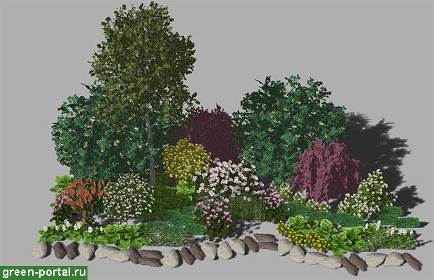 Группа растений в мае